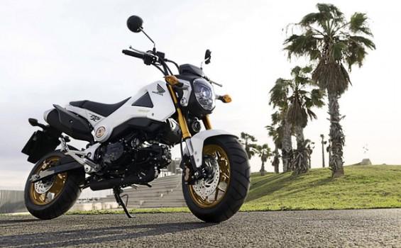 Einziger Nicht-Roller in der Riege der Rückrufkandidaten ist die Honda MSX125.  (Foto: Honda)